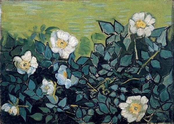 Дикие розы   Винсент Ван Гог