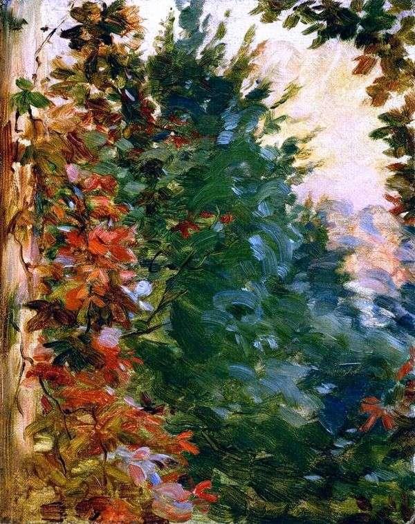 Вид на сад   Мари Бракемон