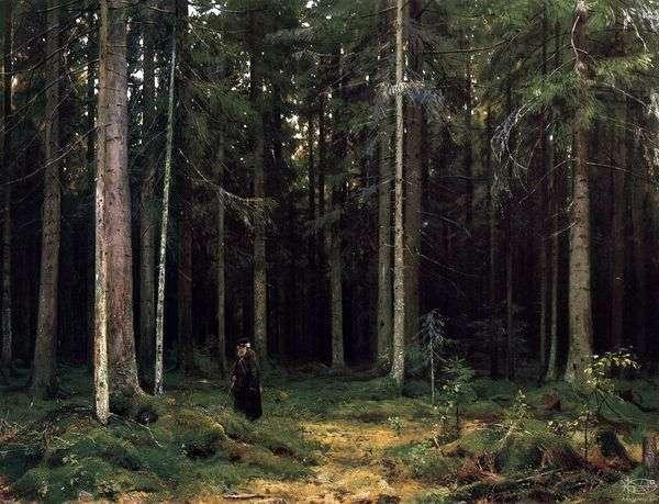 В лесу графини Мордвиновой. Петергоф   Иван Шишкин
