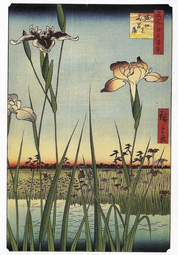 Ирисы в Хорикири   Утагава Хиросигэ