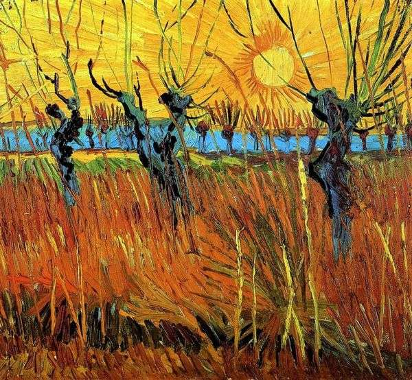 Ивы на закате   Винсент Ван Гог