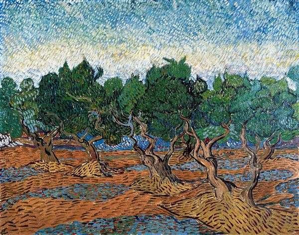 Оливковая роща IV   Винсент Ван Гог