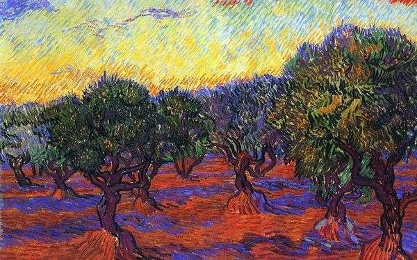 Оливковая роща: оранжевое небо   Винсент Ван Гог