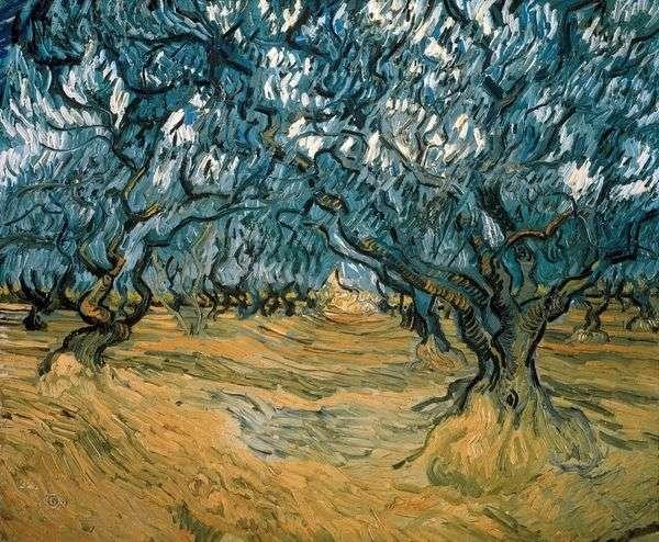 Оливковые деревья   Винсент Ван Гог