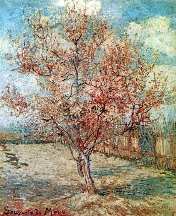 Персик в цвету   Винсент Ван Гог