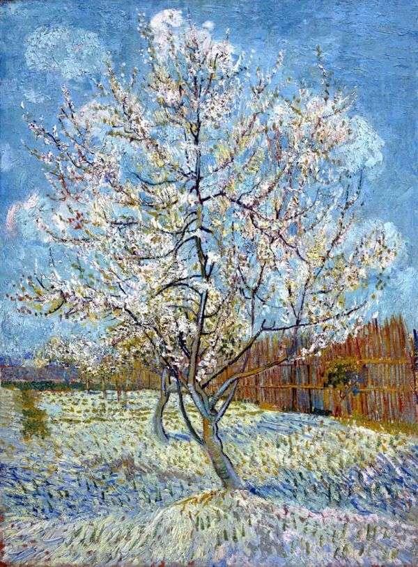 Персиковое дерево в цвету   Винсент Ван Гог