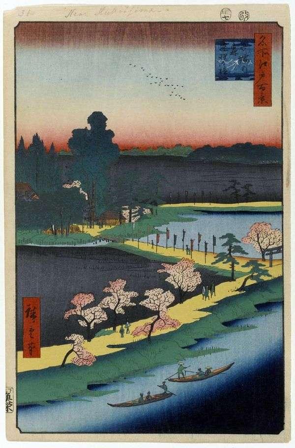 Сросшиеся камфарные деревья у святилища Адзума но мори