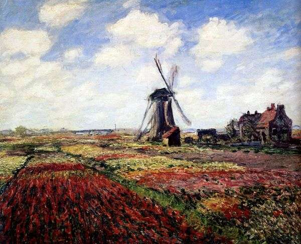 Тюльпаны Голландии   Клод Моне
