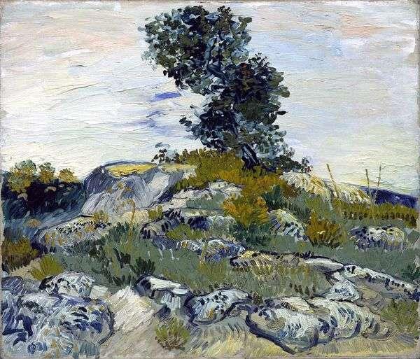 Валуны и дуб   Винсент Ван Гог