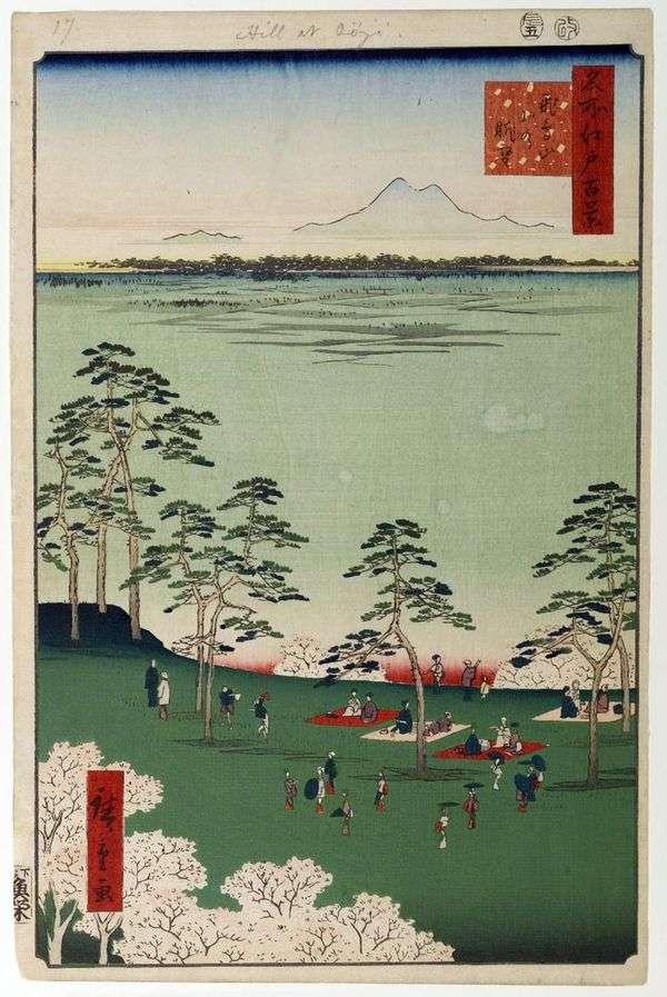 Вид на север от горы Асукаяма