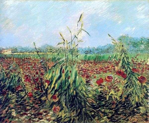 Зеленые колосья пшеницы   Винсент Ван Гог